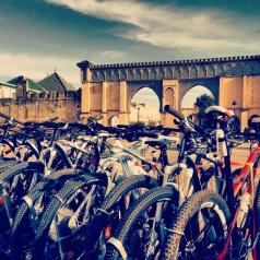Passeios de bike pelo Marrocos com a Morocco Imperial Bike