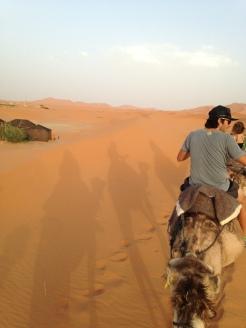 Rolê de camelos para ver o pôr do sol